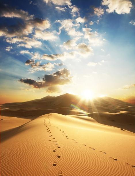 desert_on_sunset