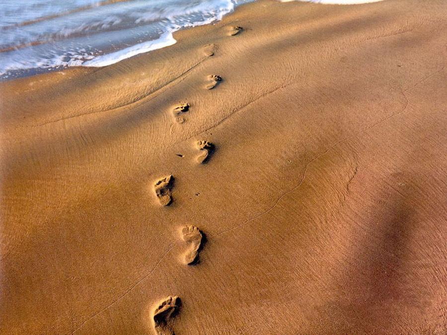 footprint1800a
